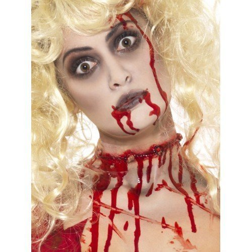Halloween Scary Zombie Special Effects FX Make Up Face Paint Fancy Dress Costume Kit by Fancy (Kits Fx Special Up Make)