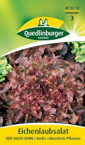 Eichenlaubsalat, Red Salad Bowl Red Salad Bowl