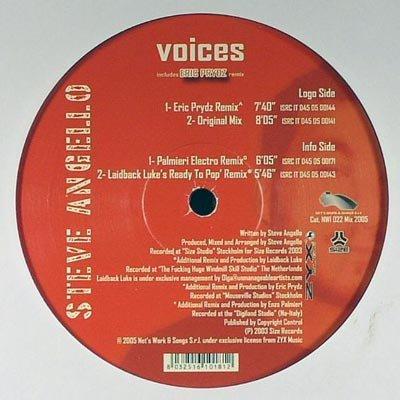Voices [Vinyl 12