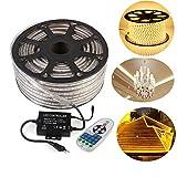 GreenSun LED Lighting 5050 SMD LED Streifen Strip mit 23 Tasten Fernbedienung RF Controller Lichter 60 LEDs/M für Zuhause Weihnachten Dekoratio, 30M Warmweiß