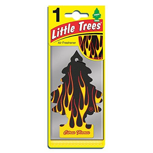 arbre-magique-senteur-agrumes