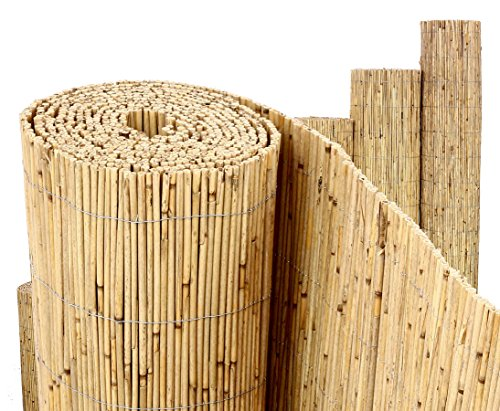 bambus-discount.com 12141