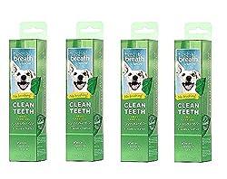 Fresh Breath Clean Teeth 2 oz Gel Oral Care for Dogs No Brushing Dental Health (4 Pack)