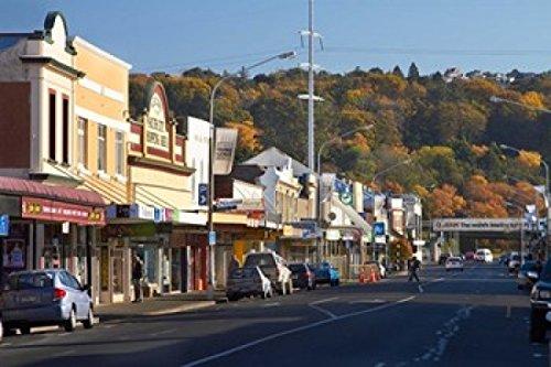 The Poster Corp David Wall/DanitaDelimont - Shops on King Edward Street Autumn Dunedin South Island New Zealand Photo Print (65,84 x 43,89 cm)