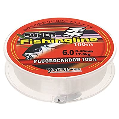 SUMAJU Fishing Line, 0.8/1/1.2/1.5/2/2.5/3/3.5/4/4.5/5/6(mm) Diameter Nylon Thread Strong Fishing Line 100 Meters by SUMAJU