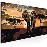 murando Peinture par Numero Impression sur Toile l'Afrique 80x40 cm n-A-0364-d-a