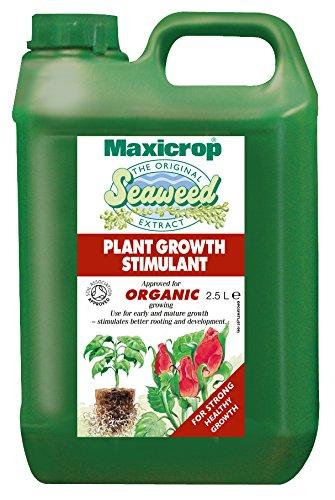 Maxicrop Original 140210 Bio-Meeresalgen-Extrakt, 2,5l (Meeresalgen Red)