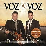 Songtexte von Voz a Voz - Destiny