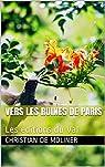Vers les ruines de Paris par Moliner