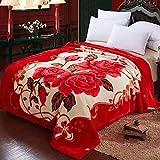FOREVER-YOU Decke Decke Dicke Winter Coral Fleece Decken Zweibettzimmer mit Etagenbett warme Decke, doppelt dick 200 x 230 cm, Traum Manor.