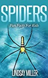 Spiders: Fun Facts For Kids