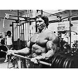 Arnold Schwarzenegger (32inch x 24inch / 80cm x 60cm) Silk Print Poster - Seide Plakat - B5E11A
