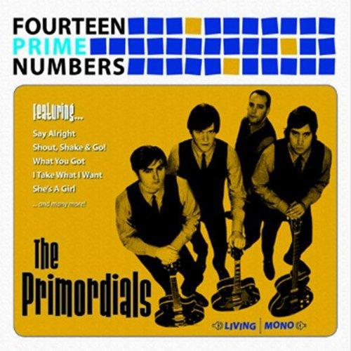 Fourteen Prim Numbers