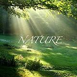 Nature - Wake Up Sound, Weckerton, Sonnerie Du Réveil, Sveglia Tono, Tono De Alarma - Single