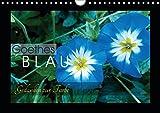 Goethes Blau. Gedanken zur Farbe (Wandkalender 2019 DIN A4 quer): Die schönsten Blautöne aus der Natur, charakterisiert von Goethe. (Monatskalender, 14 Seiten ) (CALVENDO Natur)