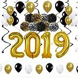 QILICZ Geburtstag Abschluss Party Deko 2019 - Pompoms Blumen, Spiral Girlanden,Luftballon,Foil Party Swirls, 2019 Anzahl Luftballon für Geburtstag,Graduierung Abschlussfeier Party,Hauptdekorationen