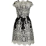iShine Women's Vintage Style Lace Embroidery Mesh Evening Dress Short Elegant A-line Cocktail Party Dress Gown Back Hollow / Backless Slip Dress