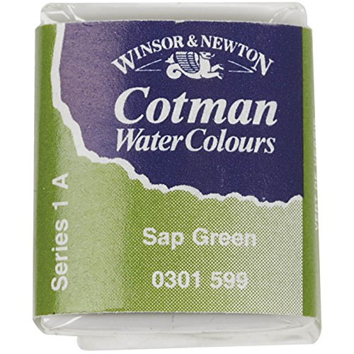winsor-and-newton-cotman-half-pan-sap-green