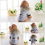 Malloom Haustier Baumwolle Gefütterte Jacke Kostüm Puppy Winter Warm Hoodie Coat Daunenjacke Hundebaumwolljacke für Hunde Katze Tierbedarf Haustierkleidung