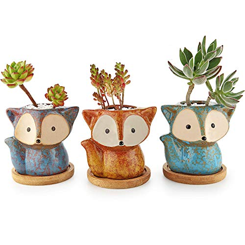 T4U Fuchs Sukkulenten Töpfe Keramik mit Untersetzer 3er-Set Blumentopf Klein für Mini-Pflanzen
