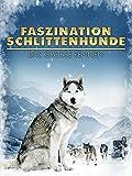 Faszination Schlittenhunde - Das große Rennen