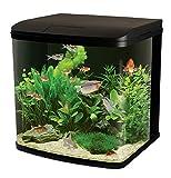 Aquatic Paradise Fish & Aquatic Pets