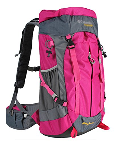 Wasserresistent Wandern Rucksack Reise Rucksack Tasche Knapsack Outdoor Sport Pack,Gray RoseRed