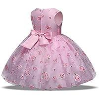 FXFAN IRL Vestido de Encaje de Flores Rosa los Niños del Partido de Boda se Visten 2-12 Años de Edad (Color : Rosado, Tamaño : 100)