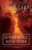 Surrender, New York: A Novel (English Edition)