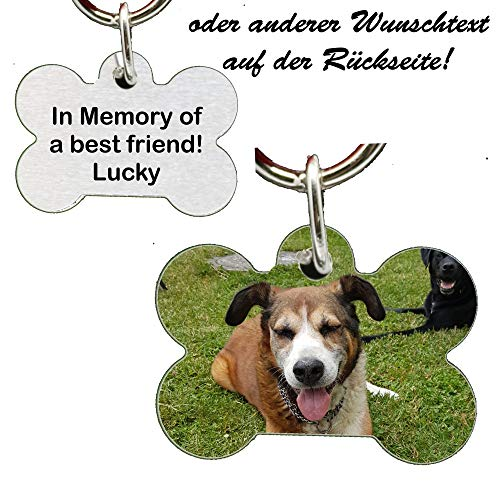 Anhänger Knochen fürs Halsband personalisiert mit Bild ! Name Telefonnummer Adresse ... einseitig bedruckt Hundemarke f. Hundehalsband Katzenhalsband Kette DogTag