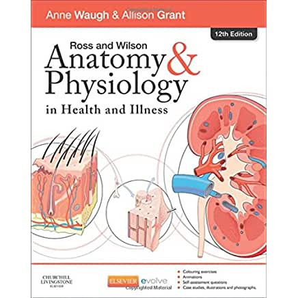 fantastic voyage essay anatomy and physiology 2