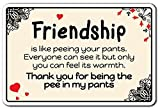 Deko Schilder mit Sprüchen Friendship is like Peeing Freundschaft Funny Love Friends Bond Metall Aluminium Wand Sicherheit Schild