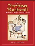 51A%2BC%2B6vYRL. SL160  - I migliori libri da leggere su Norman Percevel Rockwell