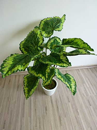 Blattbegonie Begonie Kunstpflanze Dekopflanze 65 cm grün-gelb 60749 getopft F 67