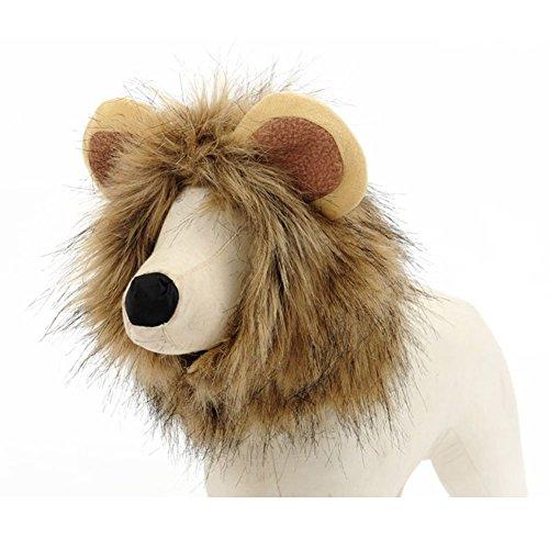 TININNA Haustier Kostüme Löwe Mähn Perücke Cosplay für Hunde Katze mit Ohren Hund Kleider Haar Schal für Hund Hundebekleidung Spielzeug S EINWEG Verpackung