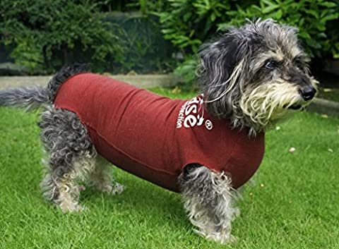 DogEase Pet Wound Protection Suit - Great alternative to Buster collar cone! ( S - 28cm (5 - 7.5