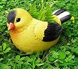 Best Gifts & Decor Garden Decors - Garden Pots By Wonderland : Fat Bird Flowers Review