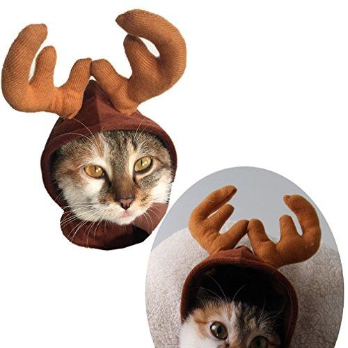 Rentier Katzen Für Kostüm - ODN Haustier Hund Welpen Katze Weihnachten Festival Hut Rentier Elch Cap Kostüm