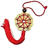FENG SHUI Set of 1 Lucky Charm Ancient I CHING Coins Prosperity Protection
