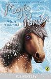 Magic Ponies: Winter Wonderland