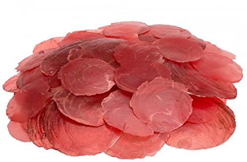 NaDeco® Camar rot 0,5kg   Capiz   Perlmuttscheiben   Hochzeitsdekoration   Maritime Dekoration