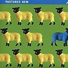 Nmc Sampler - Pastures 2 by HOLLOWAY / BIRTWISTLE / POWERS;