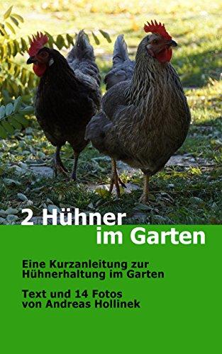 Hühnerhaltung Im Garten 2 hühner im garten eine kurzanleitung zur hühnerhaltung im garten
