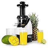 Duronic JE2 Extracteur de jus vertical 220W - Vitesse de 80 tours / minutes - Sans BPA - Mastication lente et à froid des fruits et légumes frais
