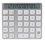 Xtrememac XMNUMBTCAL - Teclado numérico y calculadora de Aluminio con Pantalla Digital y Bluetooth, Color Gris