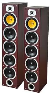 LTC V7B-MA Enceinte pour MP3 & Ipod Noir, Marron