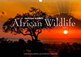 Emotional Moments: Africa Wildlife Part 2 UK (Wall Calendar 2014 DIN A3 Landscape): At the same time dramatic and beautiful images of African wildlife (Month Calendar, 14 pages)