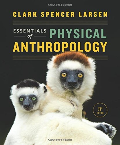 Essentials of Physical Anthropology (Third Edition) by Clark Spencer Larsen (2015-09-17)
