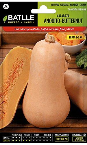 Batlle Gemüsesamen - Kürbis Anquito-Butternut (10-25 Samen)