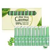 Aloe Vera Temperaturwechsel Lippenstift, ROMANTIC BEAR 10Pcs Feuchtigkeitsspendende Farbwechsel Lange Anhaltende Lip Stick Lip Cream
